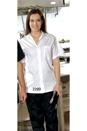 Button Clouse Cook Shirts- 2200